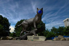 photo of statue of Bowman at the Wildcat Alumni Plaza. He is wearing a covid-19 mask.
