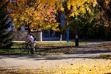 Campus trees and student on bicycle