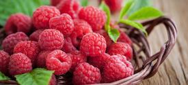 Rasberries in basket