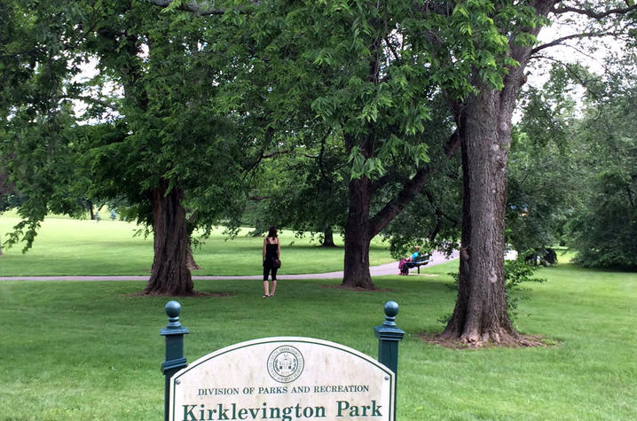 Kirklevington Park - Photo
