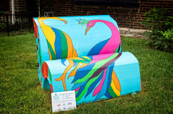 "photo of book bench for ""The Birds of Opulence"""