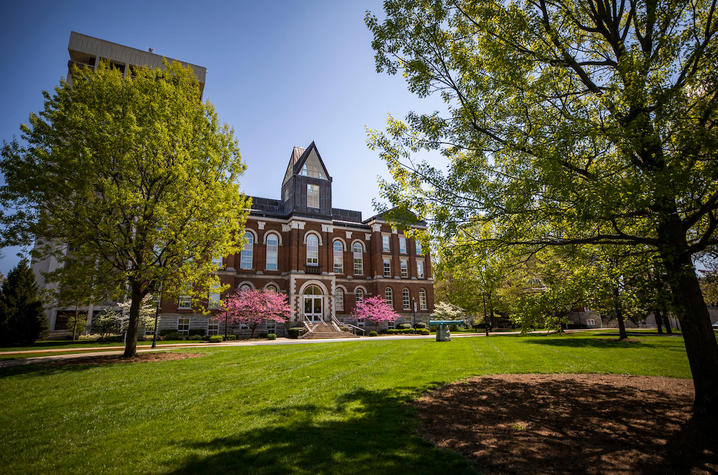 Photos of trees in front of the Main Building on UK's campus.