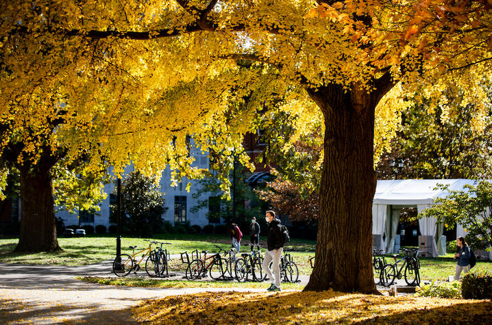 Photo of student walking through campus in the fall