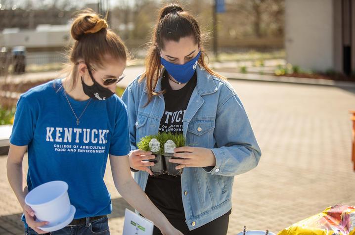 CAFE student ambassadors Sarah Daniels and Maya Fuller gathering succulents.