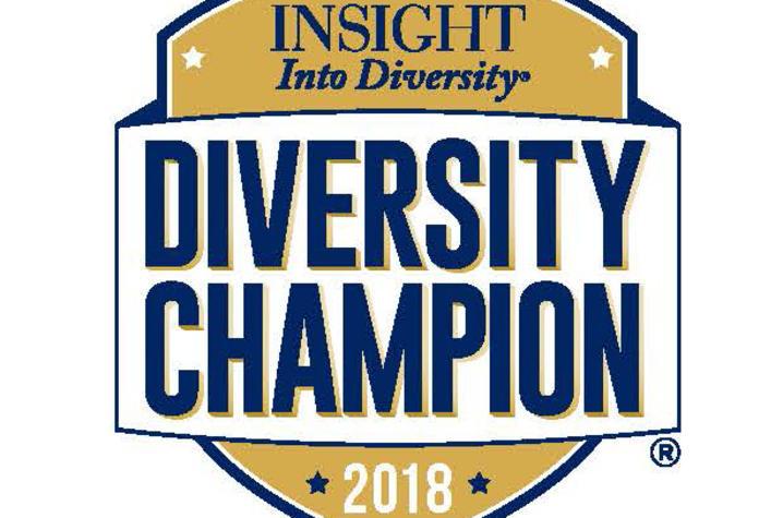 Diversity Champion 2018 logo