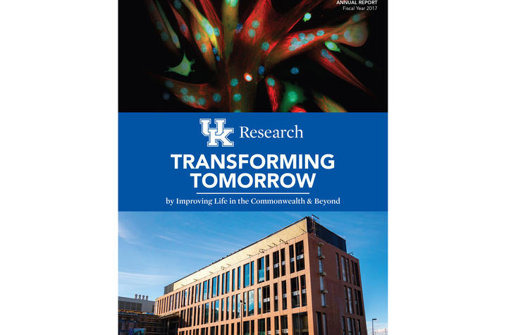 photo of cover of FY 2017 Research Report for UK