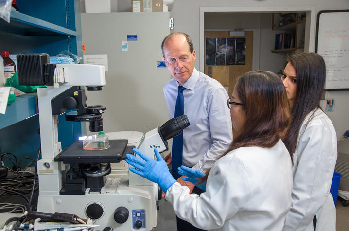 Bernhard Hennig (left) in the lab with UK-SRC researchers Chunyan Wang and Jessie Hoffman.