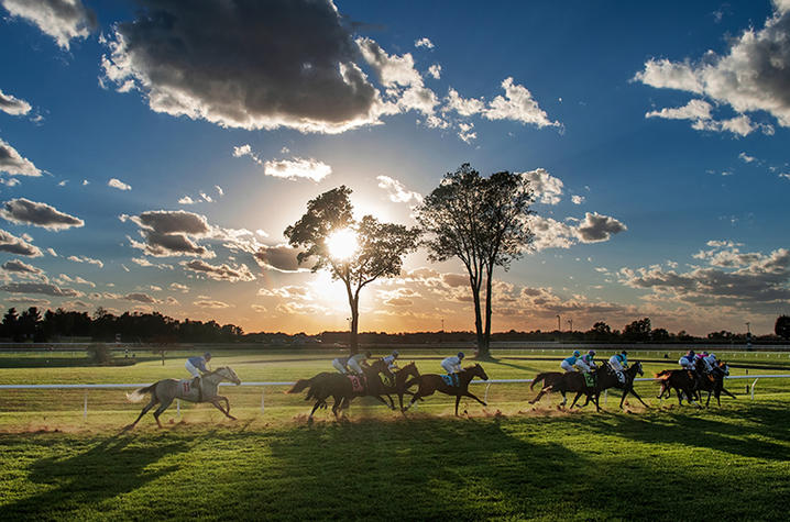 photo of horses running at Keeneland racetrack