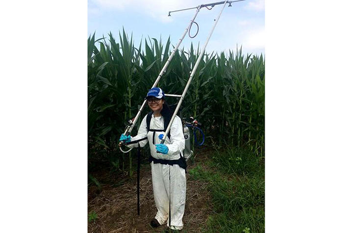 Cristina Castellano uses a backpack boom to spray fungicides on a research trial at the UK Research and Education Center