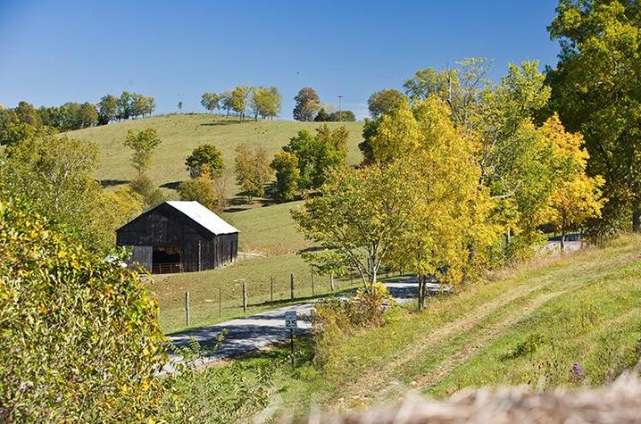 Image of farm with barn in background