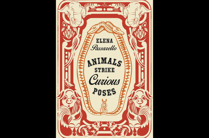 "photo of cover of ""Animals Strike Curious Poses"" by Elena Passarello"