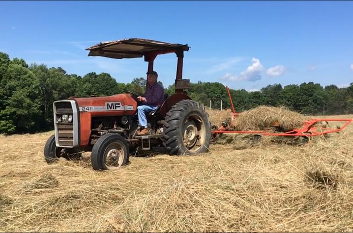 Kyle Brooks Groves enjoys a sunny day making hay on his farm.