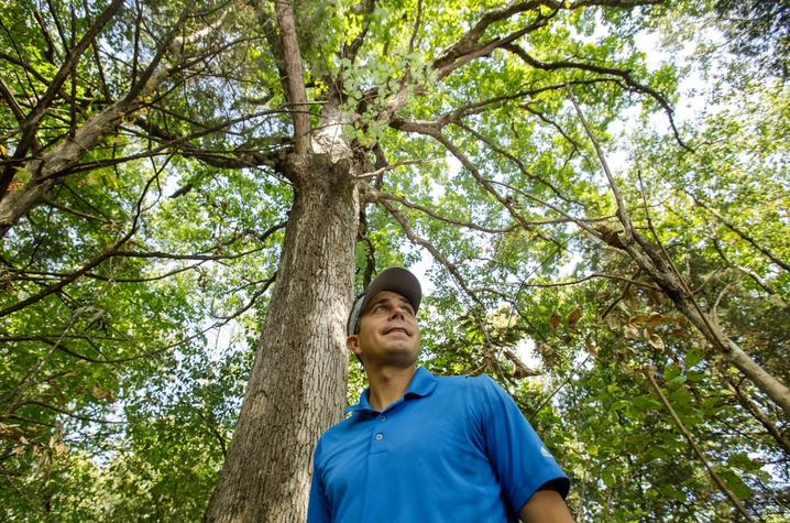Seth DeBolt poses in blue shirt against Maker's Mark White Oak tree