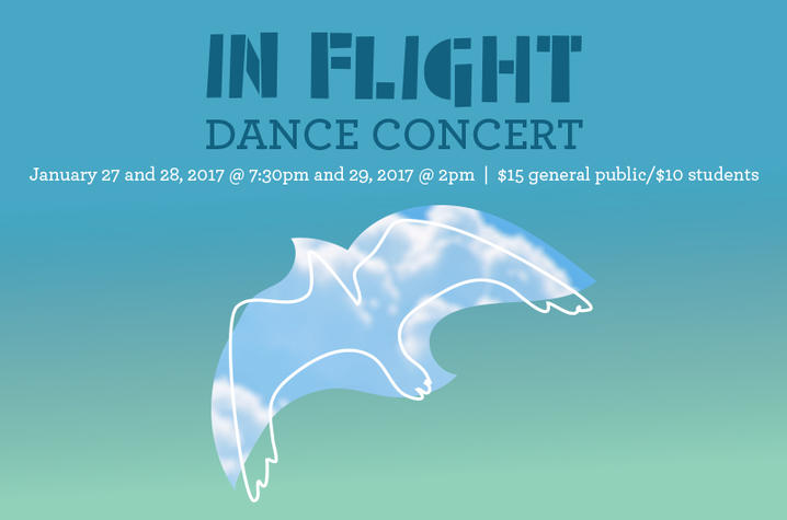 "photo of poster for ""In Flight"""