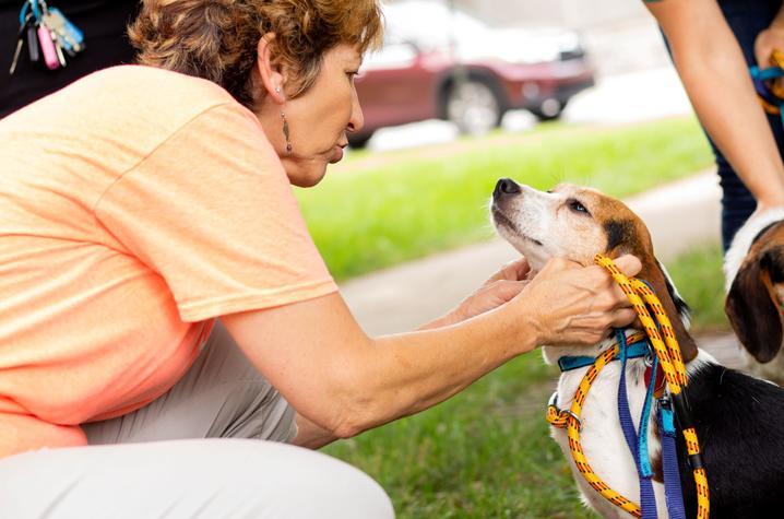 photo of woman petting a dog