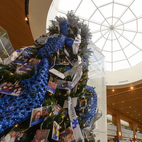 Chandler Christmas Tree