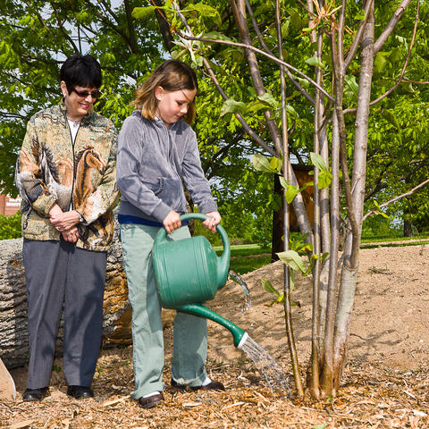 Tree Planting at The Arboretum, photo by Stephen Patton