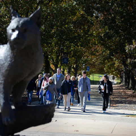 Photo of Wildcat statue and walking tour