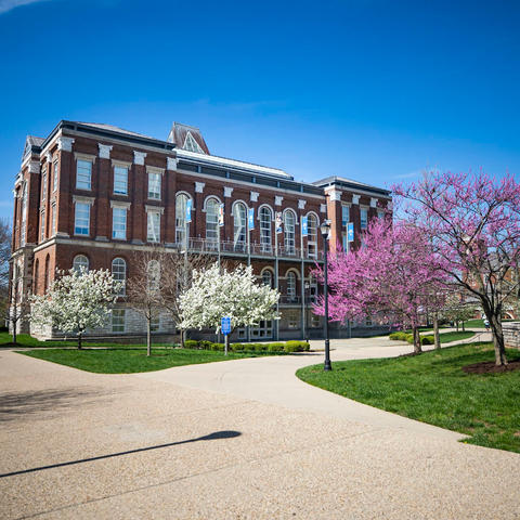 photo of Patterson Plaza area behind Main Building with flowering trees in spring