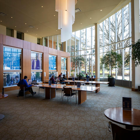 Photo of students studying in the Gatton Student Center