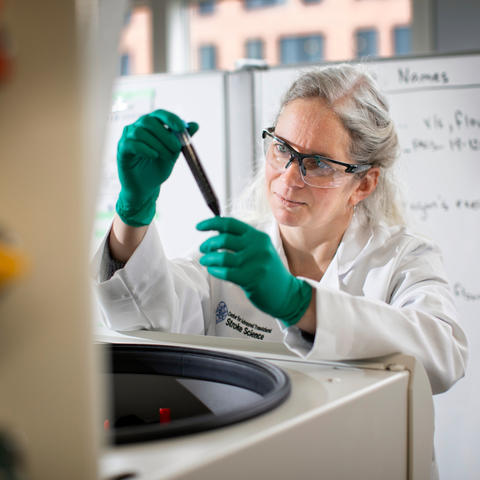 UK researcher Ann Stowe studies how the brain recovers from stroke. Mark Cornelison | UK Photo.