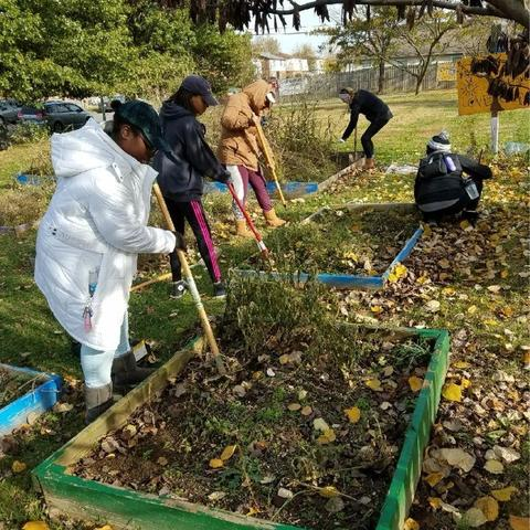 photo of UK volunteers at Community Action Council raised gardens