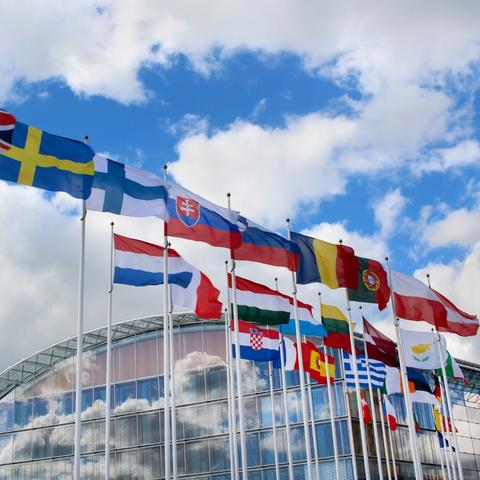 photo of flags of European Union countries