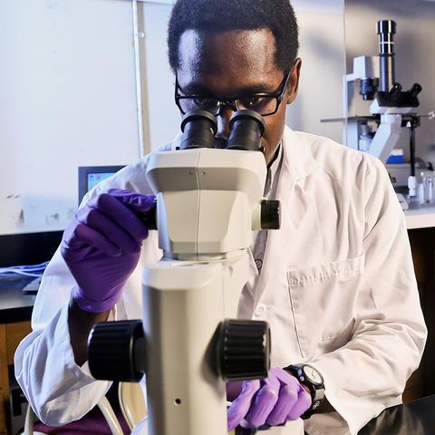 photo of research lab EnRICH program