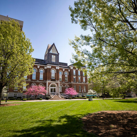 photo of Main Building from a distance through budding trees
