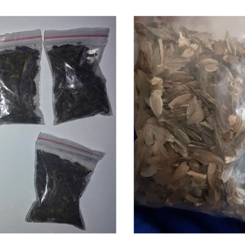 Unidentified seed packets, black (left) and brown (right)