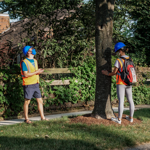 Students take measurements on a street tree as part of a previously funded Challenge Grant Project that focused on preparing urban forests for a changing climate.