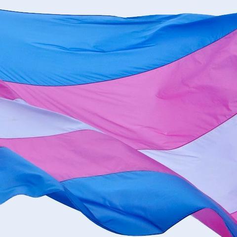 Transgender Flag