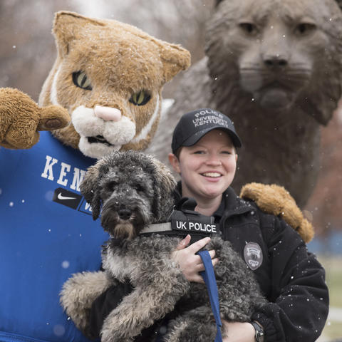 photo of UK Wildcat, Oliver and Amy Boatman