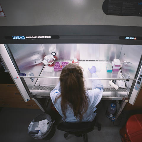 photo of women working in lab