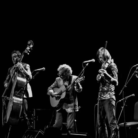 black and white photo of Sgt. Pepper's Lonely Bluegrass Band performing