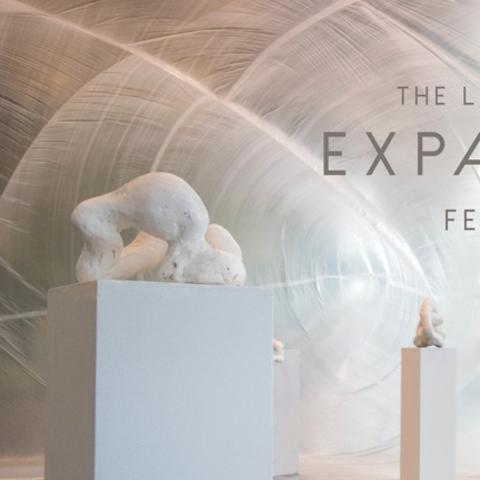 "photo of website art for ""Expanding Fields"""