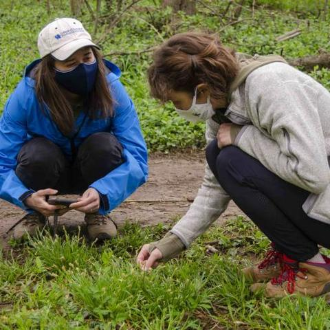 two students studying plants