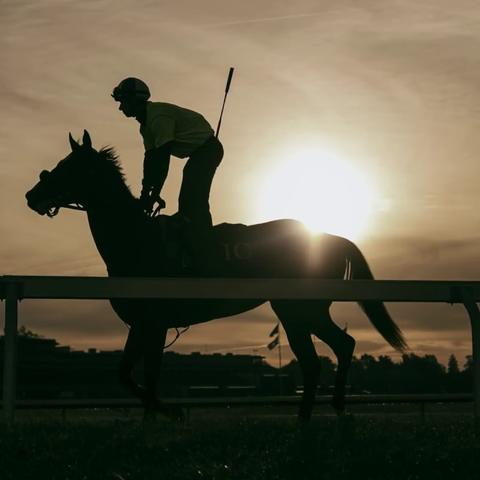 silhouette photo of horse and rider at Keeneland