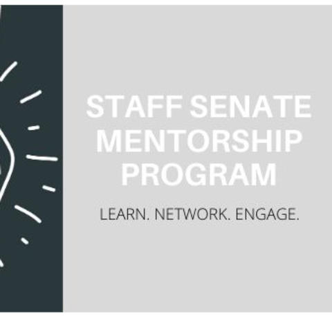 graphic that says Staff Senate Mentorship Program. Learn. Network. Engage.