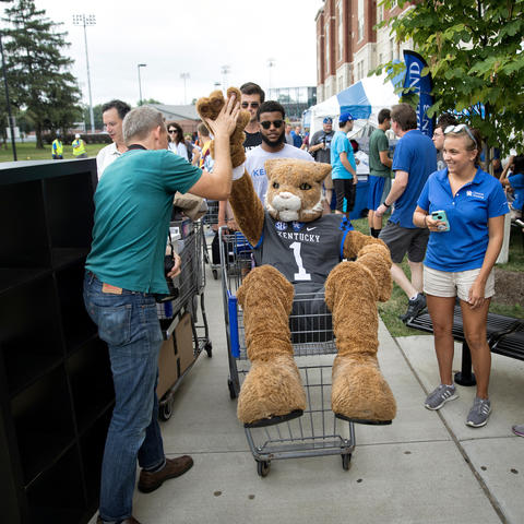 picture of the UK wildcat at move-in