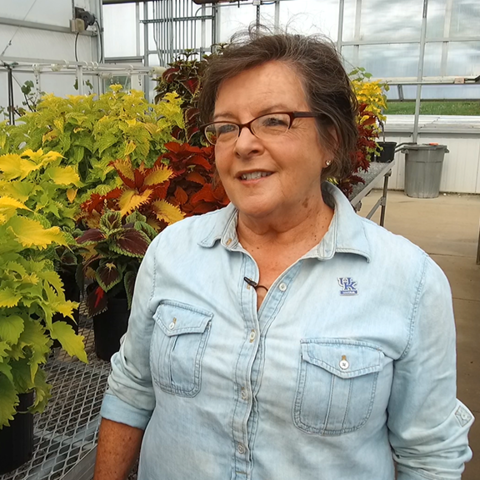 This is a photo of UK College of Agriculture, Food and Environment Dean Nancy Cox.