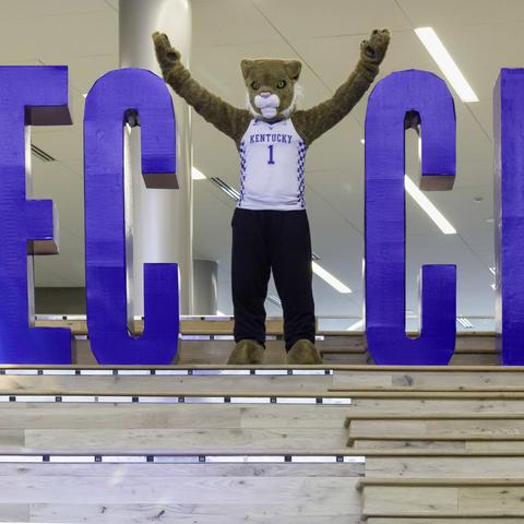 photo of Wildcat making Y in RECYCLE