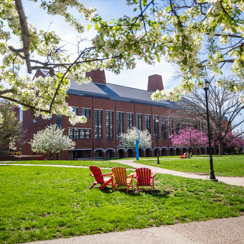 photo of UK campus in the spring