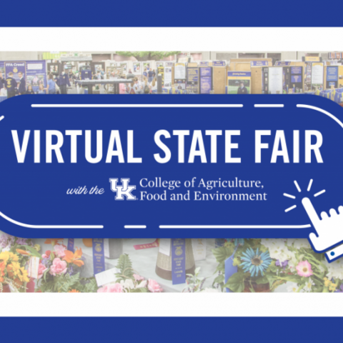 Virtual State Fair flyer
