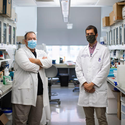 UK researchers Patrick Sullivan and Brad Hubbard have been awarded $3.2 million to continue research that could pave the way for a treatment for traumatic brain injury. Pete Comparoni | UK Photo.