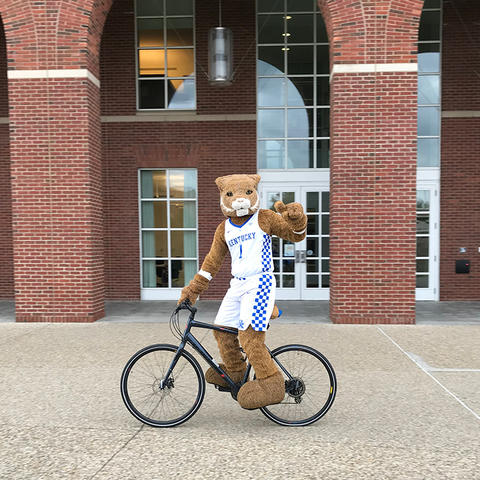 photo of UK Wildcat mascot on a bike in front of Young Library