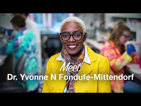 Thumbnail of video for People Behind Our Research: Yvonne Fondufe-Mittendorf and the Epigenetics of Cancer