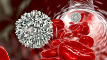 New UK research reveals that B cells may travel to remote areas of the brain to improve recovery after a stroke.