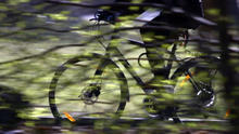 photo of person riding bike past trees