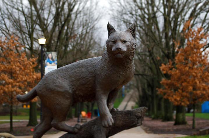 Photo of Bowman statue